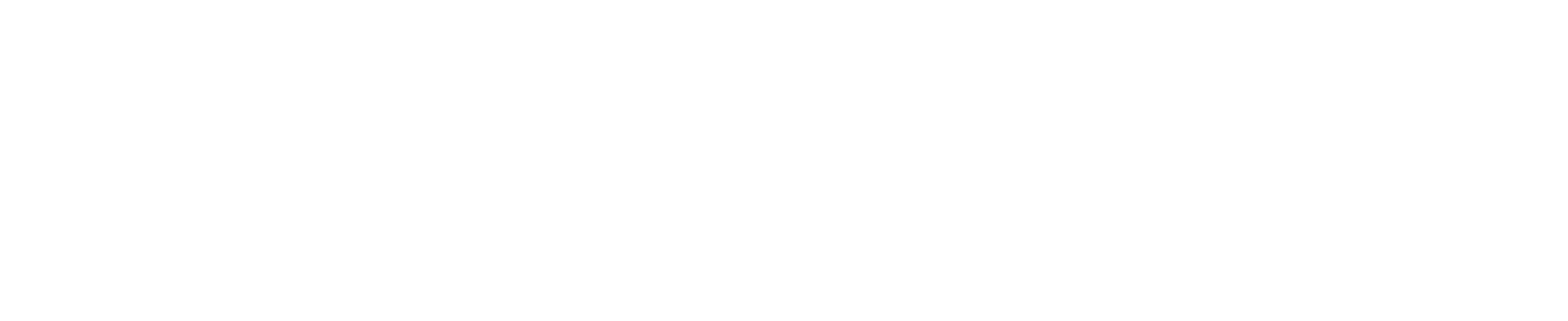 near north bc logo_white-01